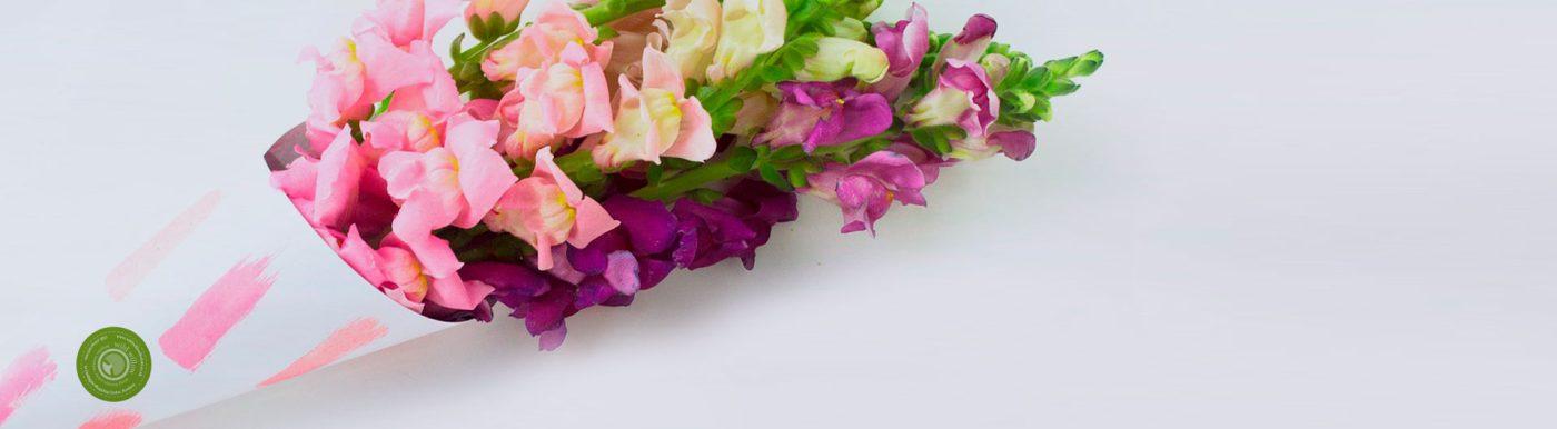 etichette adesive personalizzate per fioristi